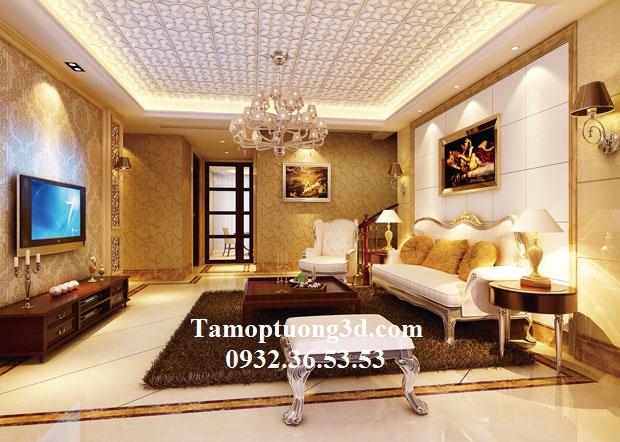 Tam-op-da-3d-DP2007.1