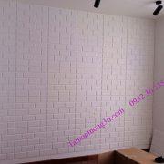 Vật liệu trang trí 3d nội thất phòng  khách hình khối gạch Brick